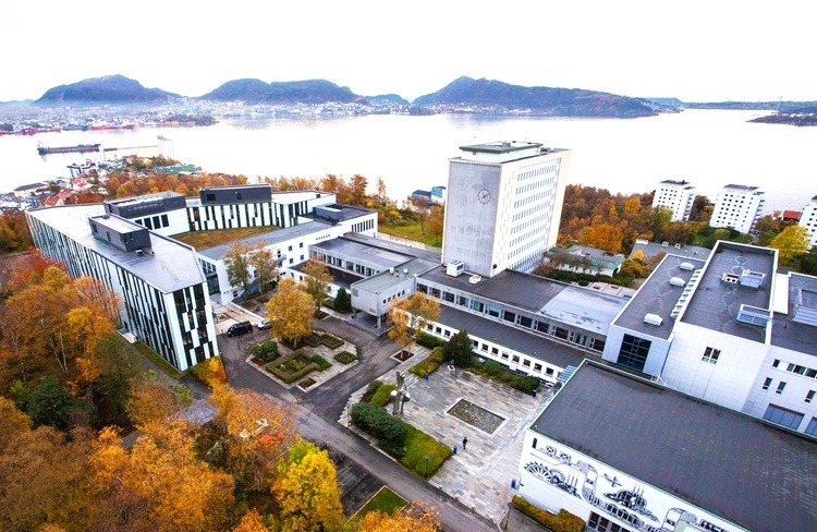 Ariel photo of NHH with autumn colours